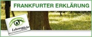 Frankfurter Erklärung Website 04