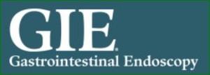 Logo GIE Endoskopy