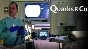 Quarks 2014-08